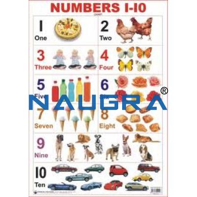 Educational Charts for Teaching Equipments Lab