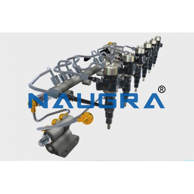 Fuel Supply System Of 6 Cylinder In Line Diesel Engine:(Test Rig) Automobile Engineering Model and Training System for engineering schools