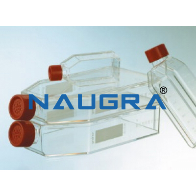 Cell Culture Bottle for Science Lab