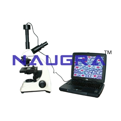 Lab Microscopes Exporters for Teaching Equipments Lab