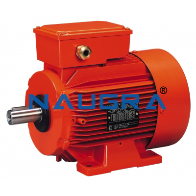 Asynchronous Electric Motor - 5 for Electric Motors Teaching Labs